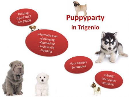 Puppyparty @ DAC Trigenio | Nijlen | Vlaanderen | België